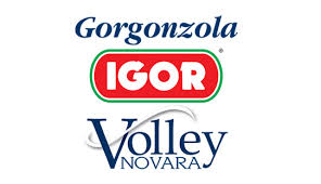 igor gorgonzola volley